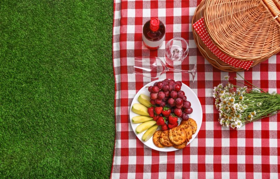 דשא סינטטי למסעדות