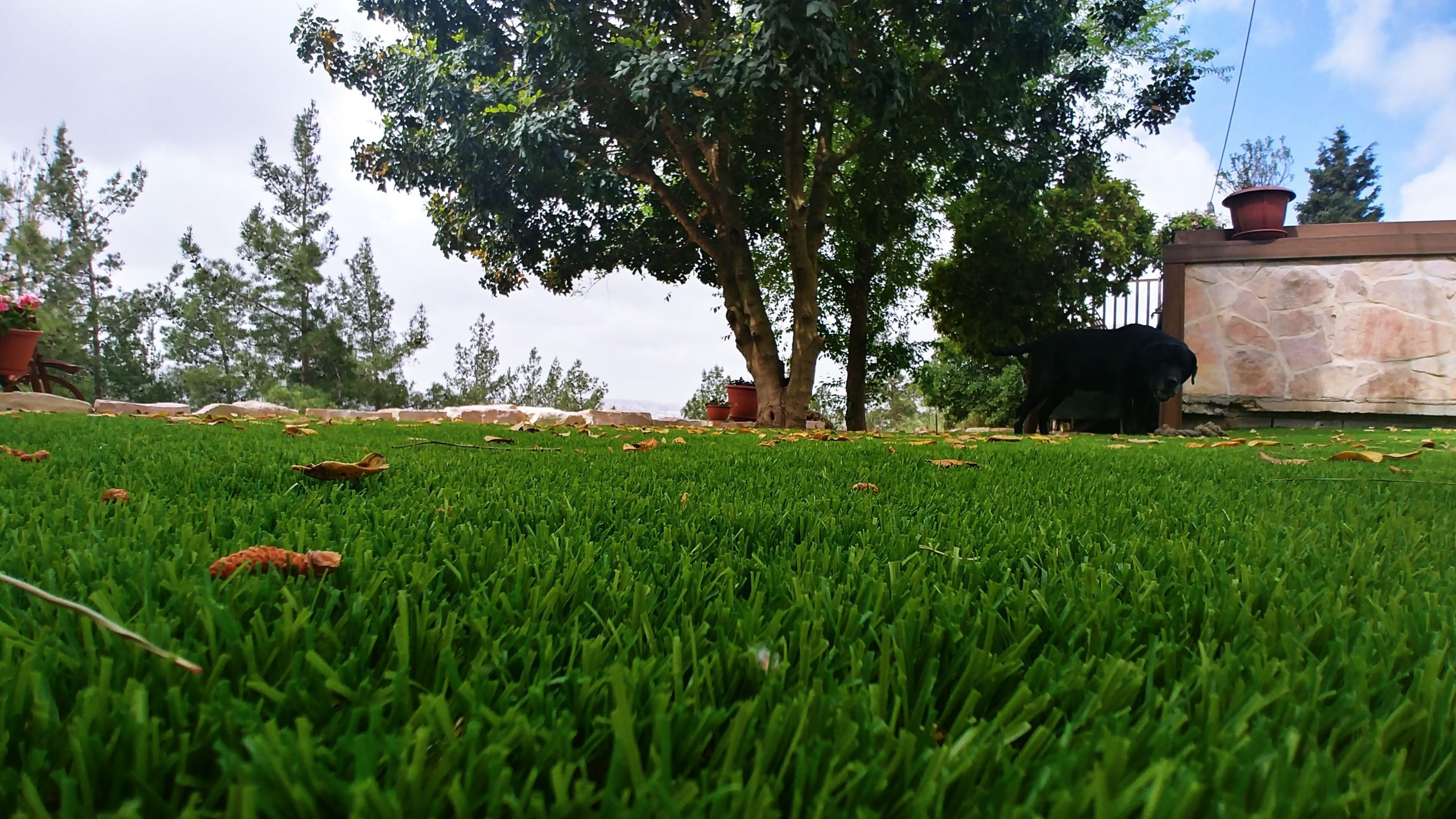 התקנה עצמית דשא סינטטי
