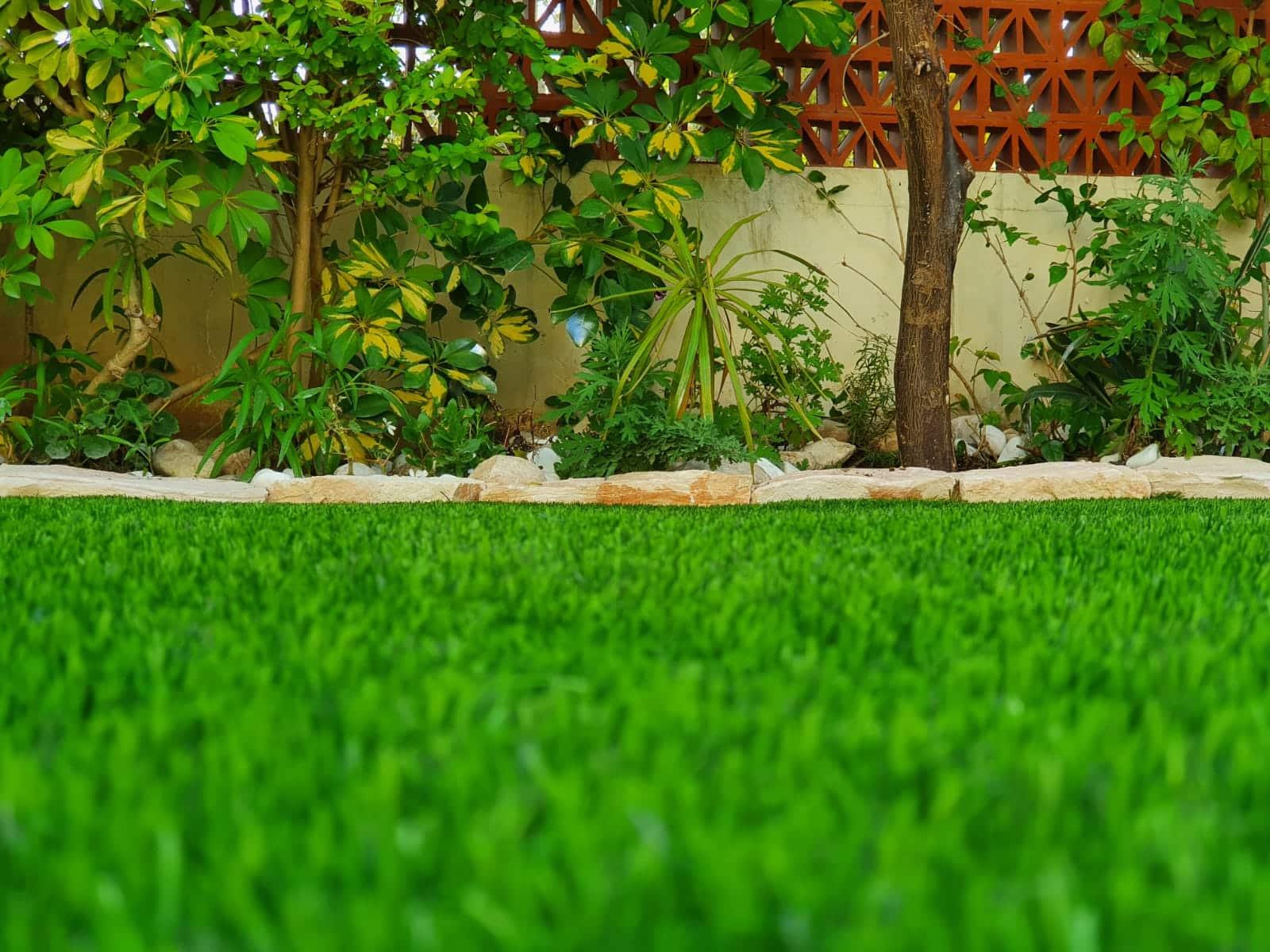 דשא סינטטי עם חול סיליקד