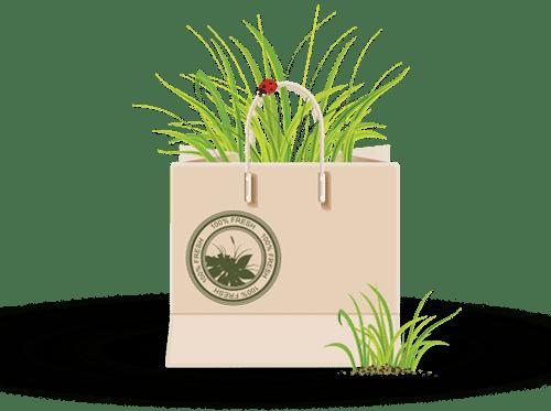 דשא סינתטי איכותי