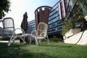 דשא סינתטי לעסקים ושטחי מסחר