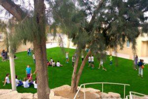 דשא סינתטי לבתי ספר