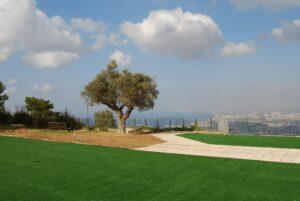 דשא סינתטי אוניברסיטת חיפה