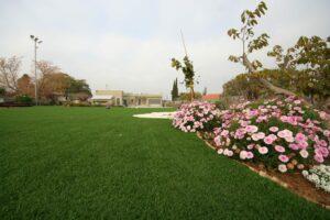 דשא סינתטי לגינה ביד נתן