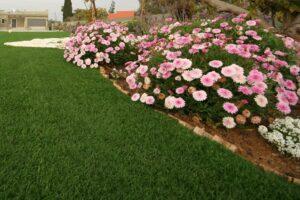 דשא סינטטי לגינה בדרום