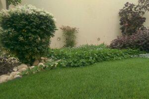 דשא סינתטי למרפסות ירוקות