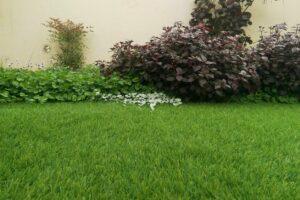 דשא סינתטי למרפסת עם צמחים