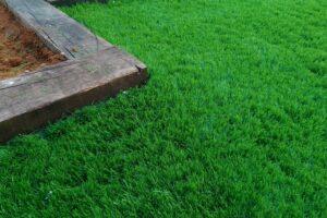 דשא סינתטי לגינה