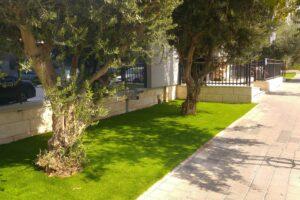 דשא סינטטי לעסקים