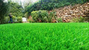 דשא מלאכותי מחיר