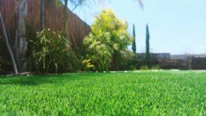 דשא סינטטי יבואן