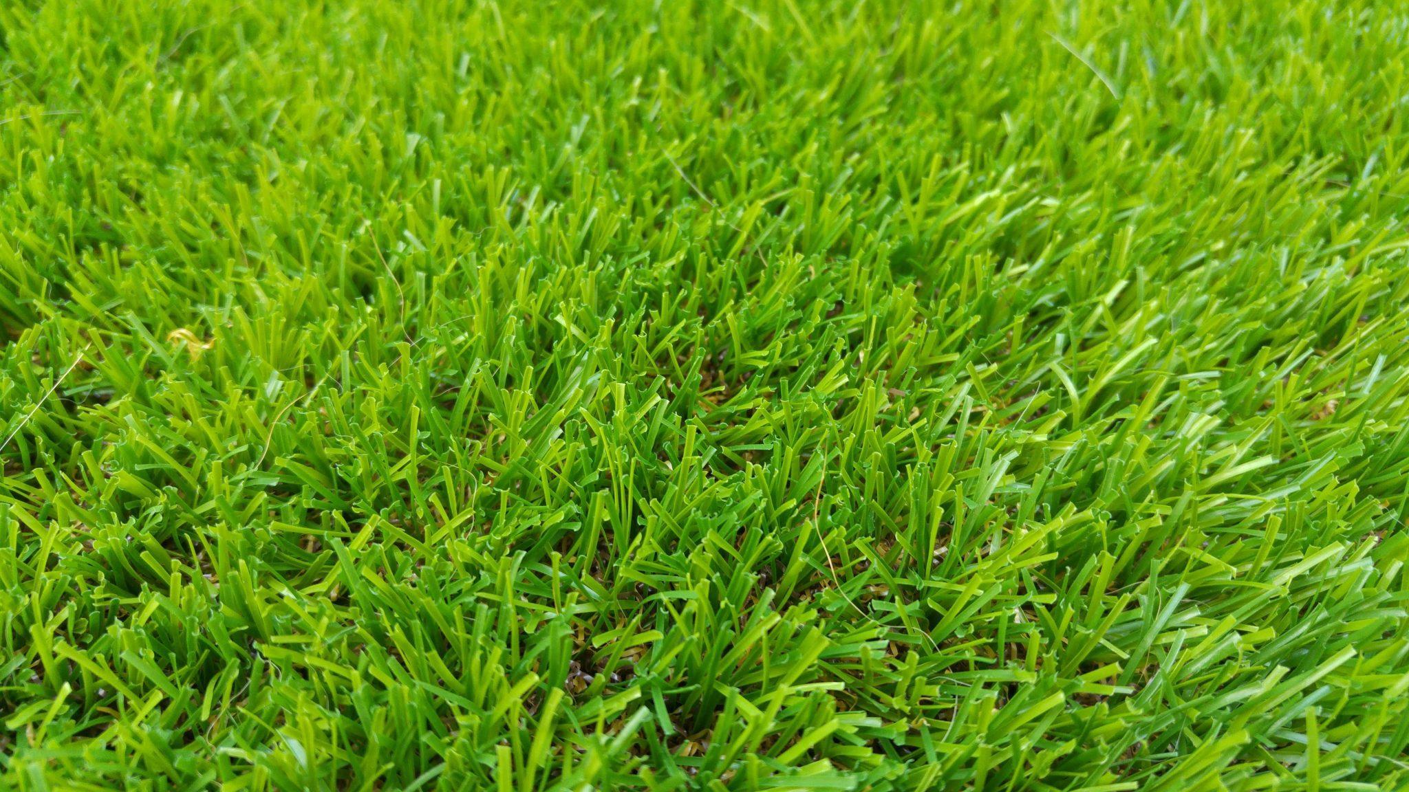 מחירי דשא סינטטי
