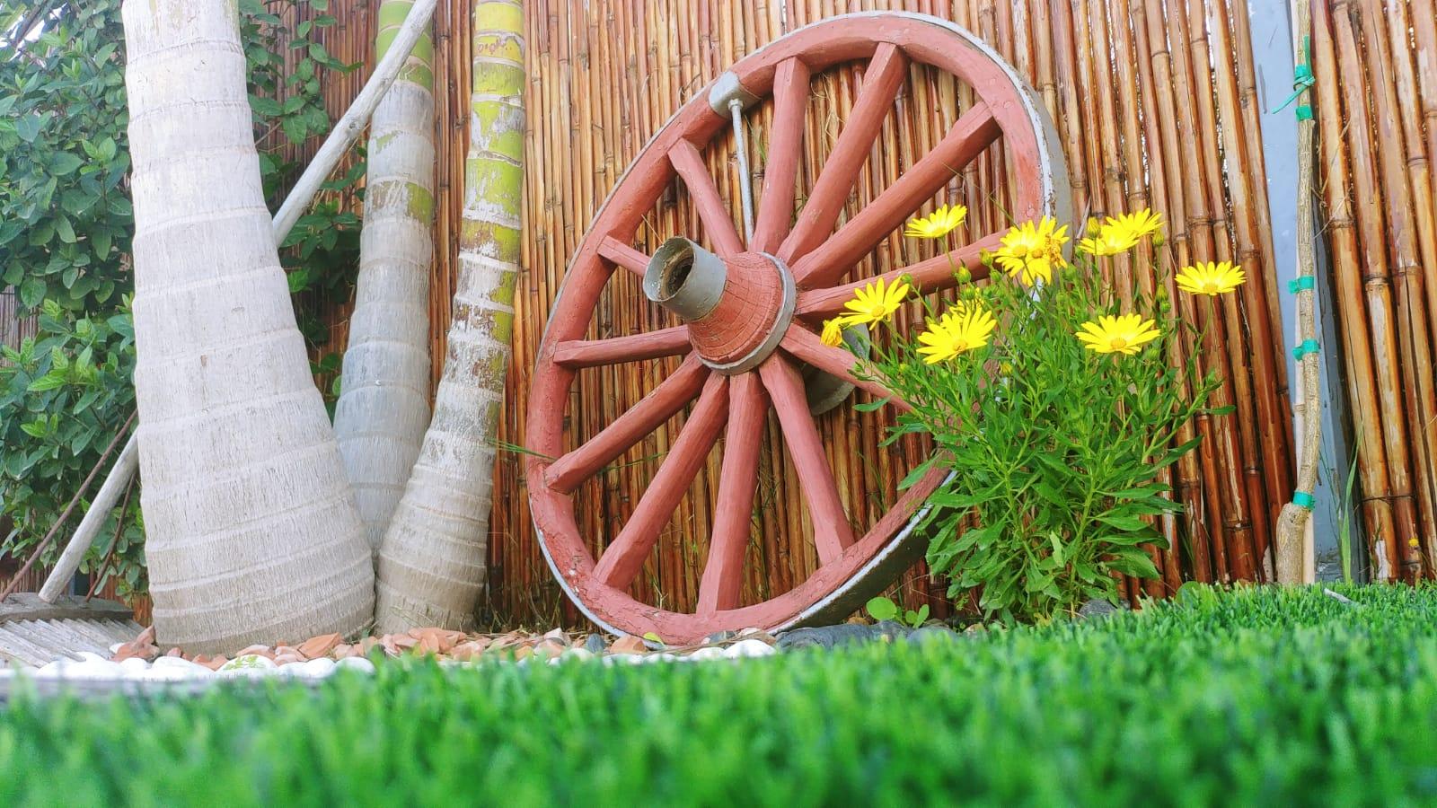 גלגל מרכבה ישן על דשא סינטטי