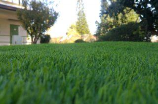 דשא סינטטי בפתח תקווה