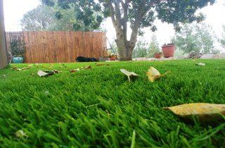 דשא סינטטי וטלוויזיות OUTDOOR לגינה