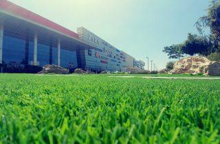 דשא סינטטי בקיסריה