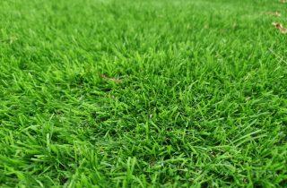 דשא סינטטי בגבעת שמואל