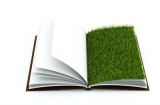 דשא סינטטי מילון מושגים