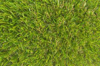 דשא סינטטי הכי זול