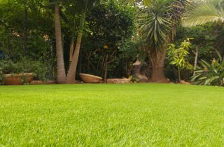 שילוב בין דשא סינטטי לפרגולה