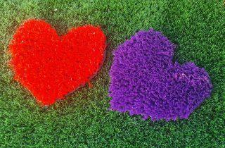 דשא סינטטי בטבריה