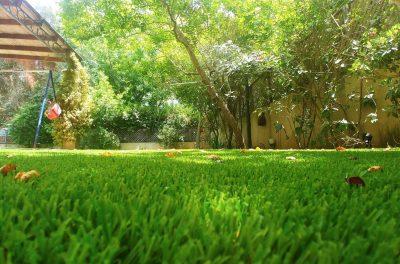 דשא סינטטי 20 מ