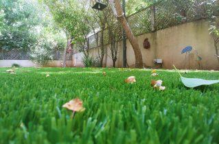 סוגי דשא סינטטי לגינות מעוצבות