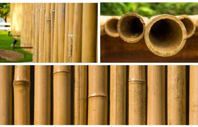Bamboo Fencing Rolls | Environmentally Friendly | Natural