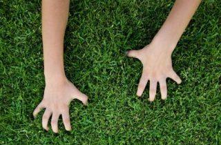 דשא סינטטי טייבה