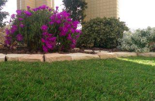 דשא סינטטי בפרדסיה