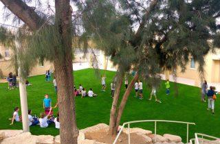 אדריכלות נוף מתקדמת עם דשא סינטטי